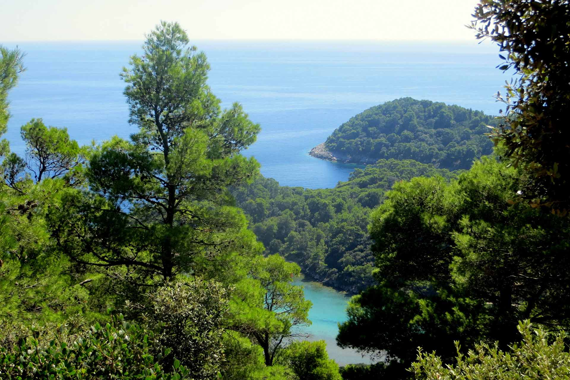 Our impact in Mljet